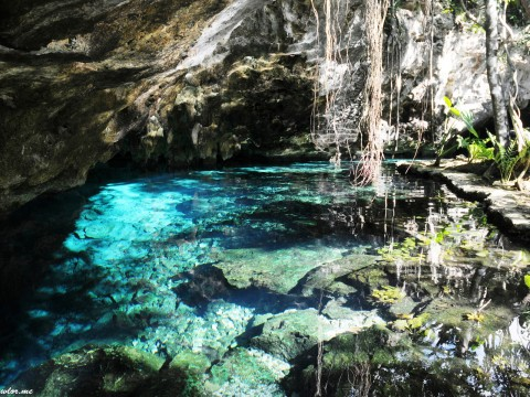Grand Cenote, Tulum – Mexico