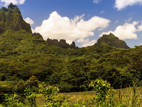 Bali Hai, Manaka Mountain, Moorea – French Polynesia