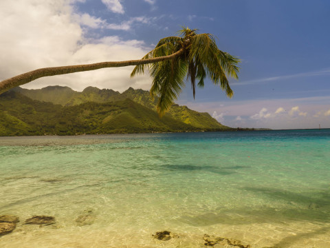 Opunohu Bay, Moorea – French Polynesia